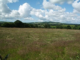 Leigh, Dorset - Meadow and pastureland south of the village