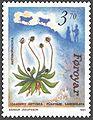 Faroe stamp 206 anthropochora - ribworth plantain (Plantago lanceolata).jpg