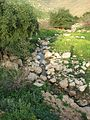 Fatzael Springs and water system 009.JPG