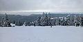 Feldberg in winter (3).jpg