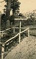 Feldgrab Infanterie-Regiment 489 RR2 OG Bulle bei Luga 1941-2 by-RaBoe.jpg