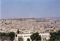 Fez - view of the city.jpg