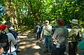 Field Trip in the Forest - Flickr - wackybadger (6).jpg