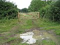 Field gate reflecting in puddle - geograph.org.uk - 1405687.jpg