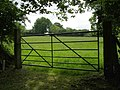 Field gate south of Closed Copse, New Forest - geograph.org.uk - 440518.jpg