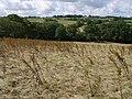 Field near Landsend Farm - geograph.org.uk - 494491.jpg