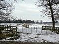 Fields near Kingston - geograph.org.uk - 1170688.jpg