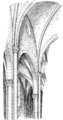 Fig 102 -Internal System of Sta Maria Novella.png