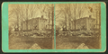 Fisk Homestead, Chesterfield, N.H, from Robert N. Dennis collection of stereoscopic views.png
