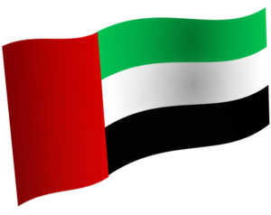 The Flag of the UAE (shown as artistically waving)
