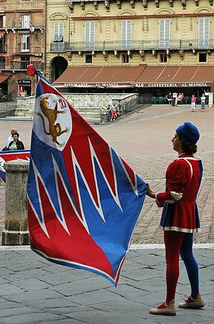 English: Flag bearer of the contrada della Pan...