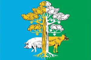 Kirovo-Chepetsky District - Image: Flag of Kirovo Chepetsky rayon (Kirov oblast)
