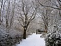 Flickr - ronsaunders47 - SNOWY LANES. LOCKING STUMPS. WARRINGTON UK..jpg