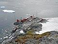 FloreAntarctique (4).jpg