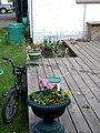 Flower Pot 2 (2068146696).jpg