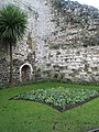 Flowerbed by the outer walls of Guildford Castle - geograph.org.uk - 1080721.jpg