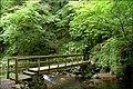 Footbridge, Glenoe glen - geograph.org.uk - 512488.jpg