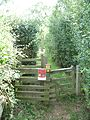 Footpath 278 west side where it crosses Stagg Hill.jpg