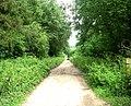 Footpath near Sports Centre - Wiltshire College, Lackham - geograph.org.uk - 942155.jpg