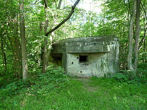 Fortified Sector of the Lower Rhine - Blockhaus in the Robertsau forest