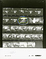 Ford A0199 NLGRF photo contact sheet (1974-08-19)(Gerald Ford Library).jpg