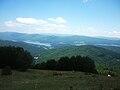 Foreste della Sila con lago Arvo sullo sfondo.jpg