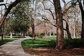 File:Forsyth Park, Savannah (Unsplash).jpg