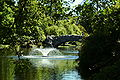 Fountain and bridge in beacon hill park retouched.JPG