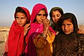 Four Afghan girls (2983616439).jpg