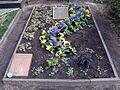 Friedhof Wilmersdorf - Grab Johannes Hass.jpg