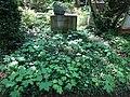 Friedhof heerstraße berlin 2018-05-12 (101).jpg
