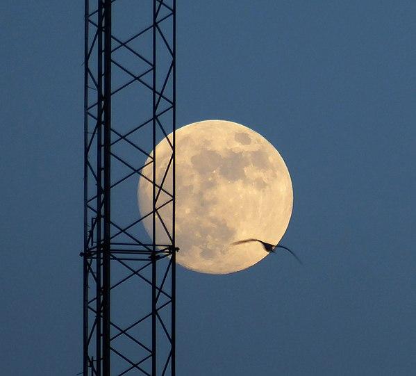 Fullmåne skapad av Jonnmann.