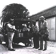 Fumigating and Disinfecting Team New Orleans 1939 a019946 Crop