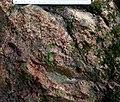 Garnet rock near Redding, CT.jpg