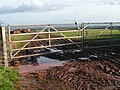 Gate and muddy entrance to a field - geograph.org.uk - 1583034.jpg