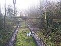 Gate into High Wood - geograph.org.uk - 1150353.jpg