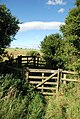 Gates on the bridleway - geograph.org.uk - 527822.jpg