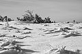 Gazon du Faing neige 2.jpg