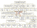 Genealogia famiglia Banchieri 3.png