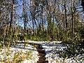 Georgia snow IMG 5017 (24082606057).jpg
