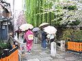 Gion Shinbashi spring.jpg