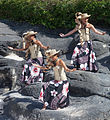 Girls of Polynesia. Port Aventura. Catalonia B52.jpg