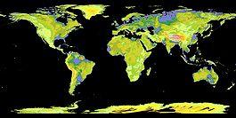 Global Digital Elevation Model.jpg