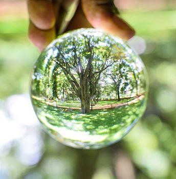 Go Green.UdayKumar.jpg