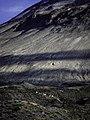 Goats Of Mt St Helens (165601067).jpeg