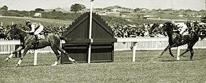 Doncaster Handicap - Image: Gold Rod 1935 AJC Breeders Plate Jockey Maurice Mc Carten