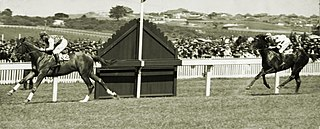 Southern Cross Stakes