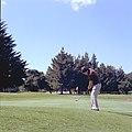 Golf chip.jpg