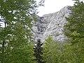 Golovrhe - panoramio (1).jpg