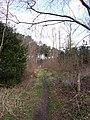 Gorrick Plantation - geograph.org.uk - 722772.jpg